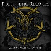 Prosthetic Records Summer Sampler 2013