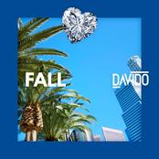 Davido: Fall