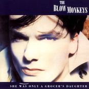 THE BLOW MONKEYS - IT DOESEN'T HAVE TO BE THIS WAY