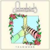 Futurebirds: Teamwork