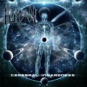 Cerebral Inwardness