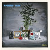Album cover of Spin, by Tigers Jaw