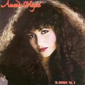 Amanda Miguel: El Sonido Vol II