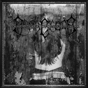 Volkermord - The Appearance