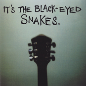 It's The Black Eyed Snakes
