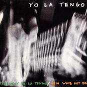 President Yo La Tengo - New Wave Hot Dogs