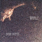 Dark Shapes