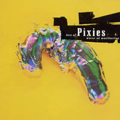 Best Of Pixies - Wave Of Mutilation