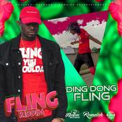 Ding Dong: Fling (Yuh Shoulda)