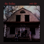 The Feelies: Only Life