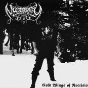 Cold Wings of Noctisis