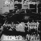 Black Metal Endsieg II (Split)