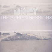 The Buried Sessions of Skylar Grey - Single