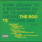 Home Grown! The Beginners Guide To Understanding The Roots Volume 1