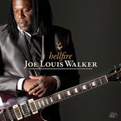 Joe Louis Walker: Hellfire