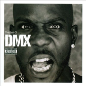 The Best Of DMX (Explicit Version)