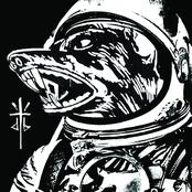 Dog Blood: Next Order/Middle Finger