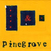 Pinegrove: Everything So Far