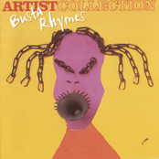 The Artist Collection - Busta Rhymes