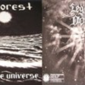 Hate Forest / Legion of Doom