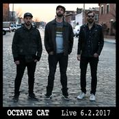 Octave Cat: Live 6.2.2017