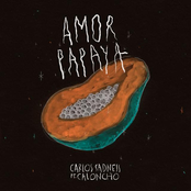 Carlos Sadness: Amor Papaya