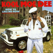 Kool Moe Dee: How Ya Like Me Now