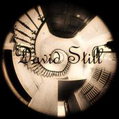 david still
