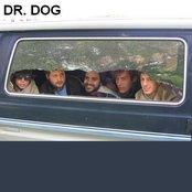 Dr. Dog 5fa2899fc3ff414f8199cf93de7c9989