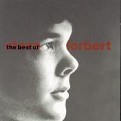Steve Forbert: The Best Of Steve Forbert: What Kinda Guy?
