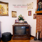 The Lone Bellow: Fake Roses