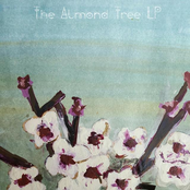 The Almond Tree LP