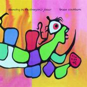 Bruce Cockburn: Dancing in the Dragon's Jaws