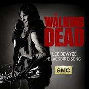 Lee Dewyze: Blackbird Song