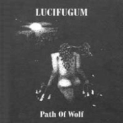 Path of Wolf