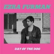 Ezra Furman: Day of the Dog