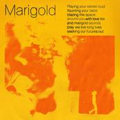 Marigold - Single