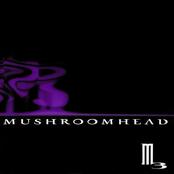 Mushroomhead: M3