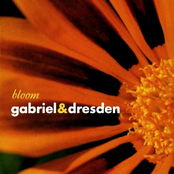 Gabriel and Dresden: Bloom