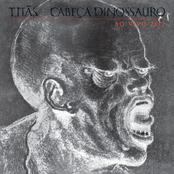 Cabeça Dinossauro Ao Vivo