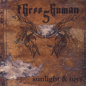Three5Human: Sunlight and Toys