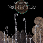 Kikagaku Moyo: Forest of Lost Children