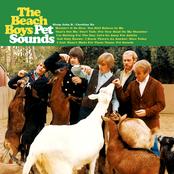 Pet Sounds (Mono)