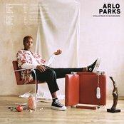 Arlo Parks - Collapsed in Sunbeams Artwork