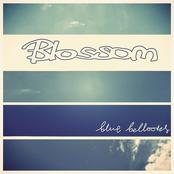 Blossom: Blue Balloons