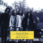 Oceans of Bliss: An Introduction to Quintessence