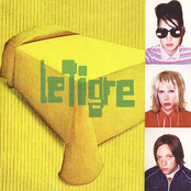 Deceptacon by Le Tigre