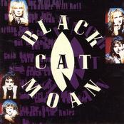Black Cat Moan: Black Cat Moan