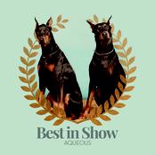 Aqueous: Best in Show