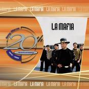 LA Mafia: 20th Anniversary Series